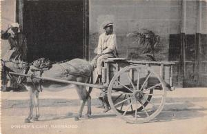Barbados Donkey and Cart Street Scene Antique Postcard J69721