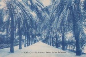 Malaga El Parque Paseo De Las Palmeras Antique Postcard