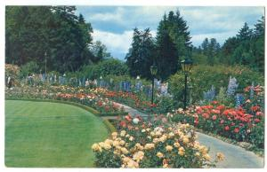 Canada, The Rose Garden, The Butchart Gardens, Victoria, BC, unused Postcard