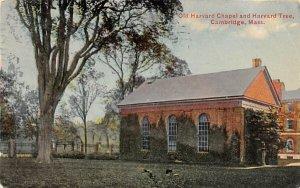 Old Harvard Chapel & Harvard Tree Cambridge, Massachusetts