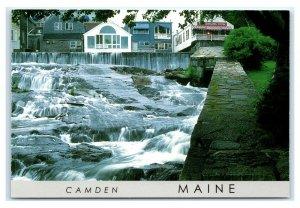Postcard Camden, Maine ME The Smiling Cow gray trim K13