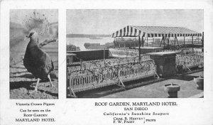 C-1910 Views San Diego California Roof Garden Maryland Hotel Postcard 20-3044