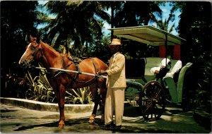 Royal Victoria Hotel Nassau Bahamas Guest Surrey Vintage Postcard Y15