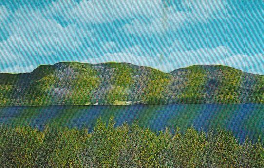 Canada Newfoundland Stephenville Crossing Gulp Pond