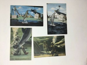Marineland Florida Lot of 4 Postcards Giant Turtle Porpoise Feeding Time