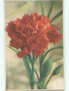 Very Old Foreign Postcard BEAUTIFUL FLOWERS SCENE AA4677