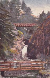 ISLE OF MAN, 1900-10s; Glen Helen, wooden walking bridges, TUCK # 1456