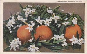 Florida Oranges and Blossoms 1919