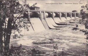 Ohio Delaware County O Shaughnessey Dam Albertype