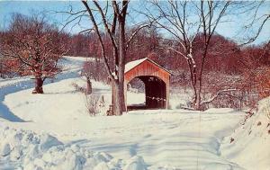 19888 PA, Pittsburgh, Brief Buckeye Bridge, encased in winter beauty