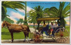 Old Landmark St Augustine FL