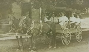 Man women Horse Buggy wagon mules RPPC Real Photo Postcard Michigan PM Ruess