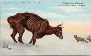 Charles Russell CM Russell CMR 'Waiting For Chinook' MT Cow Coyotes Postcard G10