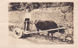 RP: Shriner in an ox cart , 00-10s