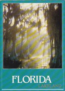 Cypress Paradise Lakeland Florida