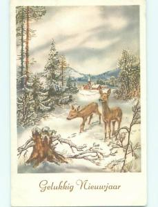 Unused 1940's New Year foreign TWO CUTE DEER IN SNOW COVERED FOREST o7646