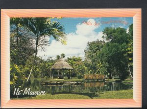 Mauritius Postcard - Botanical Garden of Pamplemousses  T6989