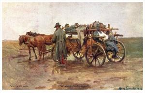 WWI Verundetentransport Signed Harry Sarwin WWI horse wagon Ambulance P...