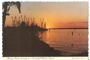 Florida Sunset silhouettes, 1986 used Postcard