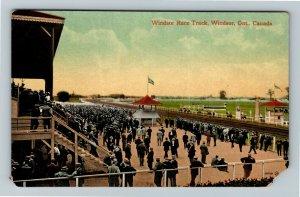 Windsor Ont. Canada - Windsor Race Track, Vintage Postcard