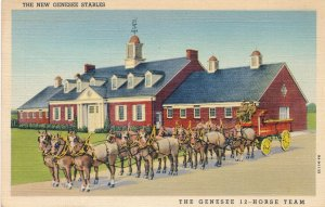 Genesee Brewery 12-Horse Team and Stables, Rochester, New York - Linen