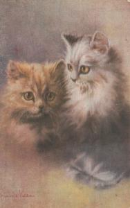 AS; MINNIE KEENE, 1900-10s; Cats Portrait