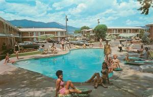 Colorado Springs Bathing Beauties Pose @ Chateau Motel~1950s Postcard