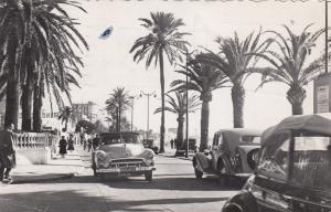 CANNES , France , 1930-50s; Promenade de la Croisette