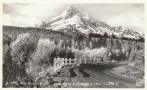 RP: MT. HOOD , Oregon , 1920-40s ; Perpetually snowcapped, elev. 11,225 ft.