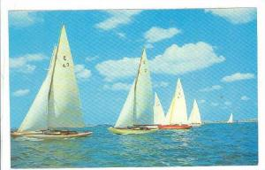 Boats of the International One-Design Class racing in the Great Sound, Bermud...