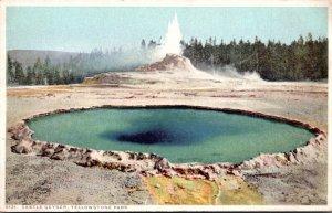 Yellowstone National Park Castle Geyser Detroit Publishing
