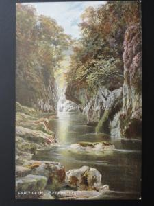 Wales BETTWS-Y-COED Fairy Glen c1908 by S. Hildesheimer & Co 5325