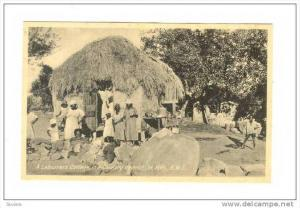 A Labourers Cottage, Country district, St Kitts, B.W.I., 1910-20s