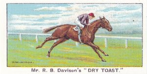 Dry Toast Winners On The Turf 1923 City Handicap Horse Racing Cigarette Card