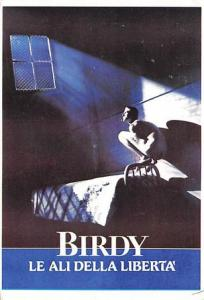 Birdy Movie Poster Postcard
