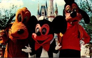 Florida Walt Disney World Mickey Mouse Pluto and Goofy