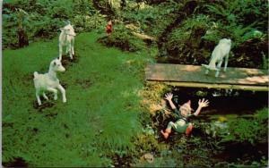 Victoria BC Billy Goat's Gruff Wooded Wonderland Beaver Lake Park Postcard D70