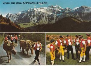 Switzerland, Suisse, Gruss aus dem APPENZELLERLAND, used Postcard