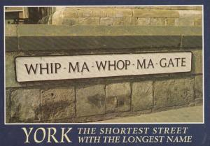 Whip Ma Whop Ma Gate Yorkshire Street Name Signpost Rare 1980s York Postcard