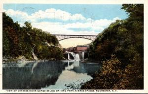 New York Rochester Genesee River Gorge Below Driving Park Avenue Bridge 1913