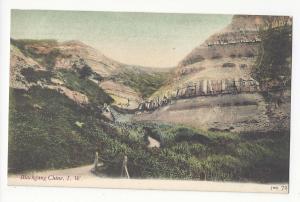 UK Isle of Wight Blackgang Chine JWS John Welch & Sons no 72 Postcard Vtg Tinted