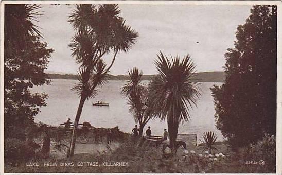 Lake from Dinas Cootage, Killarney, Kerry, Ireland, 00-10s