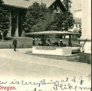 Vtg Postcard 1908 UDB Forestry Building Portland, Oregon Coca Cola Sign