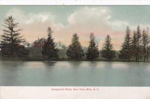New York Campbell's Pond New York Mills