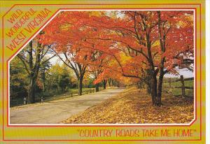 West Virginia Country Road Scene