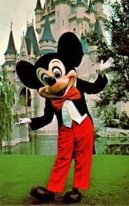 Florida Walt Disney World Mickey Mouse and Cinderella Castle
