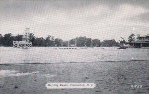 New Jersey Clementon Bathing Beach Dexter Press