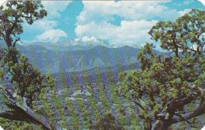 Colorado Pikes Peak Garden Of The Gods