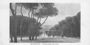 B57994 Liban Lebanon beyrouth promenade de pins