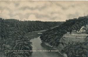 Genesee River Gorge From Driving Avenue Park Bridge Rochester New York pm 1909